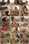 Transsexual Babysitters 24 (2013) WEBRip/SD