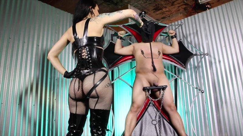 CybillTroy.com: Cock Whipping Agony - Punishment [SD] (446 MB)