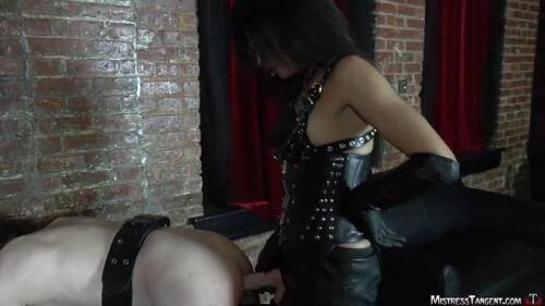 Mistress Tangent - Bitch Plug [HD, 720p] [MistressTangent.com] - Strapon