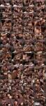 SexChangeGirl: Danielle Foxxx, Vaniity, Ava Devine - Girls Remember Former Times (2011) HD 720p