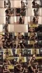 Transsexual Babysitters 13 (2010) DVDRip