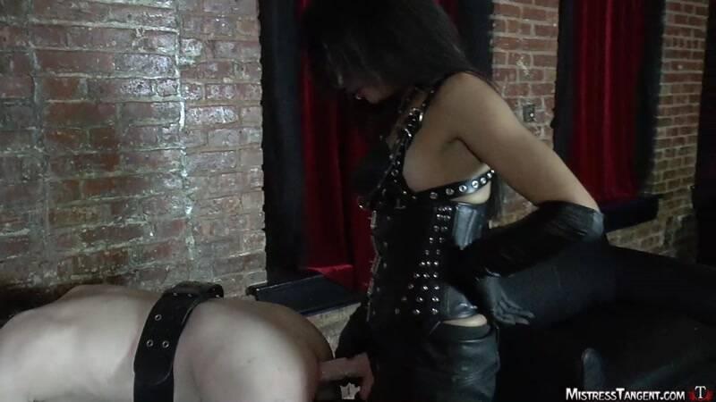 MistressTangent.com: Mistress Tangent - Bitch Plug [HD] (255 MB)