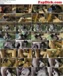 MDH/PA [Sandy4Love - Papas kleine Tochter geknallt] (HD, 720p)
