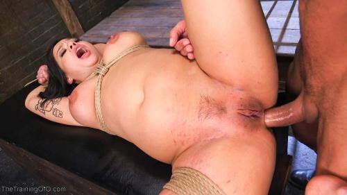 TheTrainingOfO.com [Training Big Tit Asian Anal Slave - Kimmy Lee] SD, 360p)