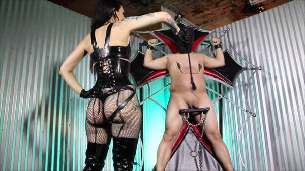 CybillTroy.com: Cock Whipping Agony - Punishment (29.01.2016/SD)