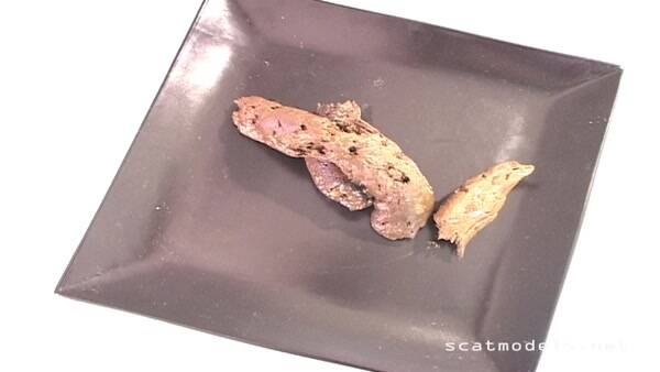 Extreme Scat [Natural Scat Girls - Shit on a plate] (HD, 720p)
