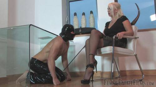 Office Apprentice - Domination [HD, 720p] [FFF] - Femdom