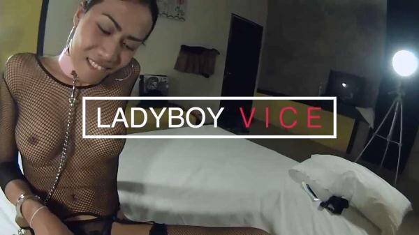 Noon - Bottom and Top (LadyboyVice.com) [HD, 720p]