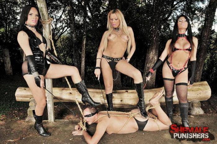 Agatha McCartney, Lohanna Finathelly, Marina Almeida - Shemale Domme Trio In The Jungle [HD, 720p] - ShemalePunishers.com/TrannyPack.com