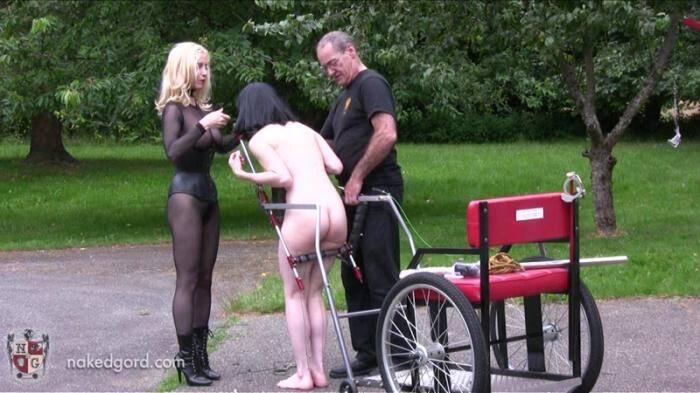 Nakedgord.com - Pony Girl Slave! (BDSM) [HD, 720p]