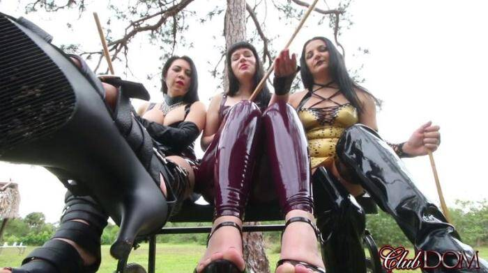CD - Mistresses Michelle, Natalya, Isobel and Lydia in POV Style (Femdom) [FullHD, 1080p]