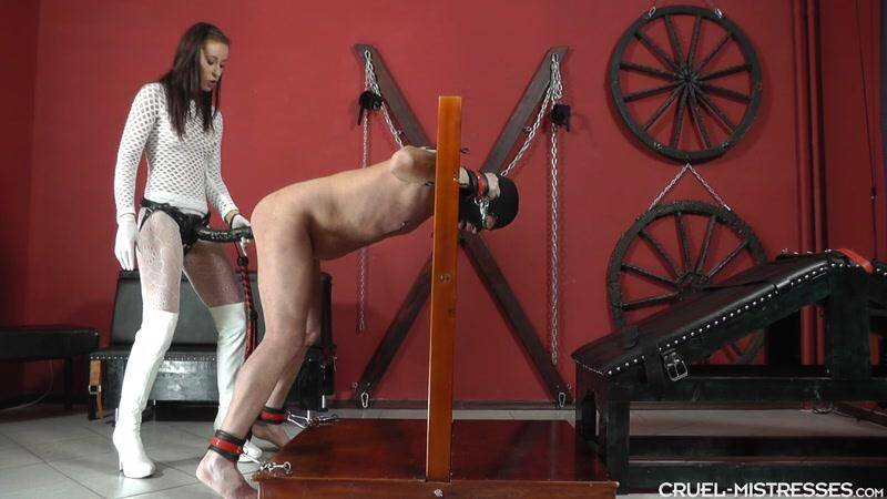Clips4Sale.com: Mistress Anette - Long Revenge [FullHD] (787 MB)
