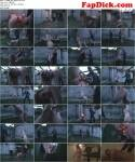 DS Dorn: To enjoy pain - part 04 [HD] (140 MB)