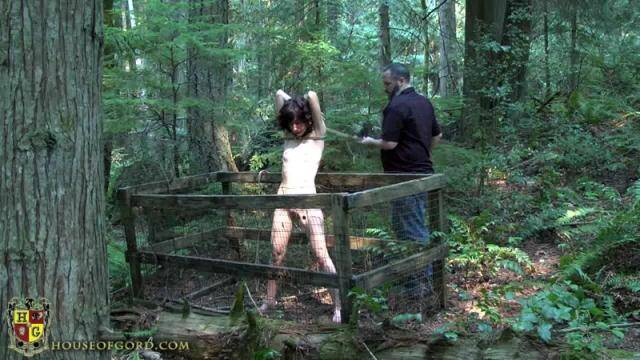 Nakedgord.com - Tied to a tree in the forest [HD, 720p]