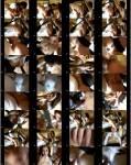 cocobaby- Auf der Liebesschaukel hart durchgebumst  [HD 720] Crazy Dirty Sex