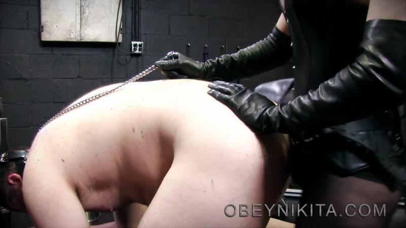 Fuck puppy [HD] - ObeyNikita