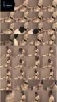 TvTied/Trussedup: Mistress Girls - Sammi Chairtied T Girl Trussedup Movie  [SD 576 22.3 MB]