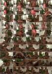 shemale: Nina Lawless - Beautiful Nina Lawless Is Back! (2016) HD 720p