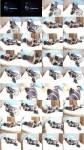 TvTied/Trussedup: Mistress Girls - Niomi Rubber Hogtie  [SD 576 14.1 MB]