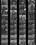 TvTied/Trussedup: Mistress Girls - Peter Paula And Janine  [SD 480 242 MB]