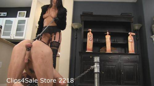 Balls On A Leash Male Pet Training [HD, 720p] [Clips4sale.com] - Femdom