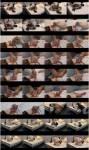 TvTied/Trussedup: Mistress Girls - Em Sissy Little Bondage Whore  [HD 720 443 MB]