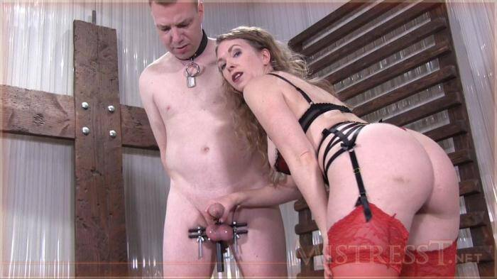 Vice Grip Milking [HD, 720p] - MistressT.net