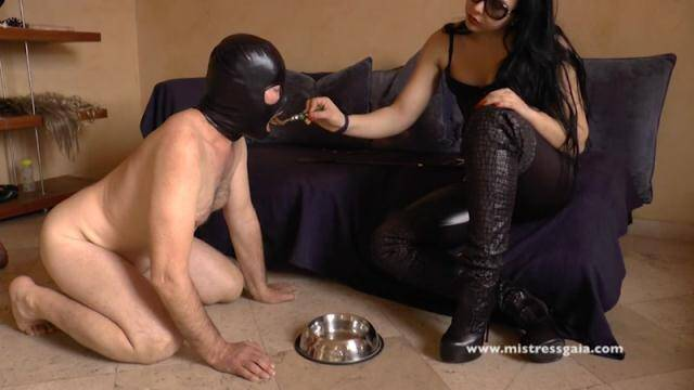 Scat Porn - FARTING AND SHITTING IN A SLAVE'S MOUTH - FEMDOM SCAT! [FullHD, 1080p]