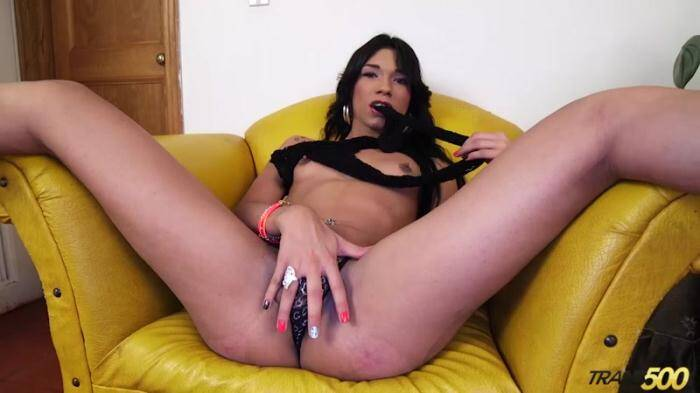 Trans 5OO - Alexa Campbell - Alexa Loves to Stroke (Shemale) [HD, 720p]