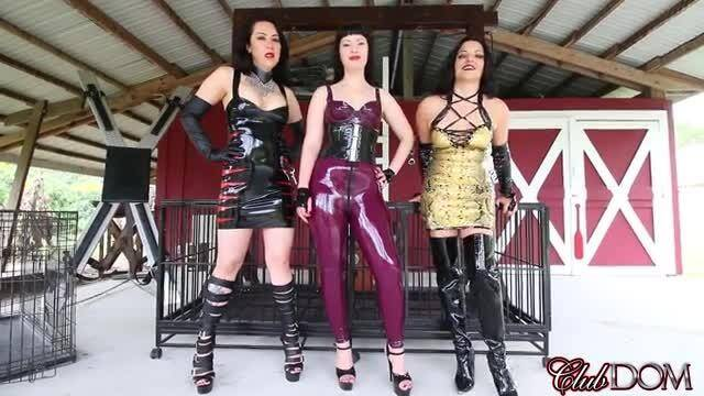 Female Domination - Michelle, Natalya & Isobel in POV 2 [FullHD, 1080p]