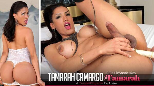 TransAtPlay, Trans500 - Tgirl Playtime with Tamarah Camargo [HD, 720p]