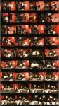 CassardStudios: Cassy Cassard - A German Tgirl Slut Scene 05  [SD 576 408 MB]