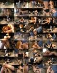 Amateurs - Barnyard Bumping (MagmaFilm) [SD 584p]