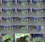 Caviar salad - Amateur Solo Scat! [FullHD, 1080p] [Scat] - Extreme Porn