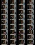 TvTied/Trussedup: Mistress Girls - Ellie Fem Dom Paula Whipped Ass  [SD 480 80.7 MB]