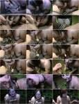 Analsperma$chlucken - Geblasen und Sperma geschluckt (MDH) [HD 720p]