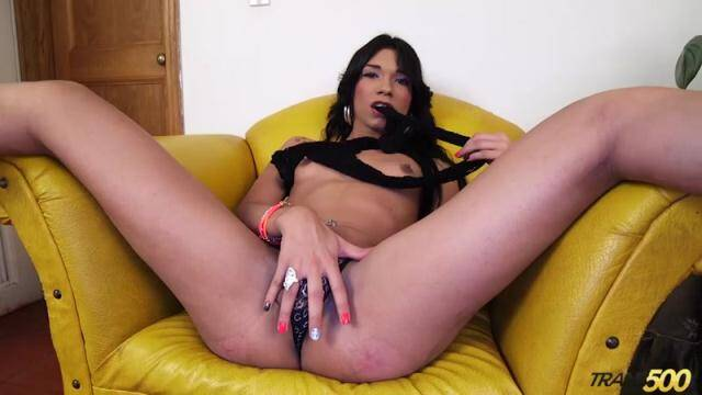 Trans500 - Alexa Campbell - Alexa Loves to Stroke [HD, 720p]