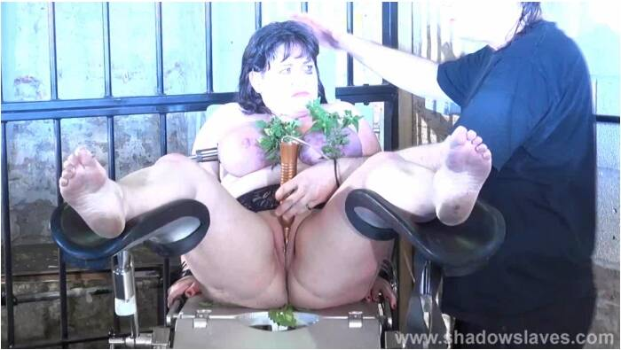 ShadowSlaves.com - Slavegirl Andrea - Persecution  [HD 720]