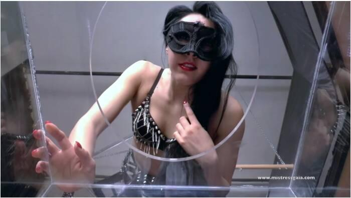 MistressGaia: Mistress Gaia - Coworker  [HD 720 173 MB]  (Scat, Italia)
