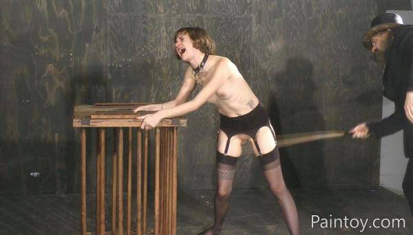 Mercy West - No Mercy - Paintoy.com (FullHD, 1080p) [BDSM, Torture, Spanking, Humiliation, Lingerie]