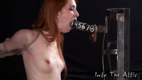 Calico Lane - BDSM [SD, 540p] [IntoTheAttic.com] - BDSM
