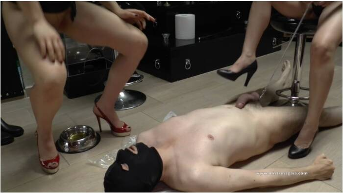 MistressGaia: Mistress Gaia - Extreme total wc slave - 2nd part  [HD 720 238 MB]  ( Scat, Italia)