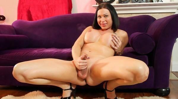 Shemale.xxx - Sexy Eva Cassini Jacks Her Hard Cock [HD, 720p]