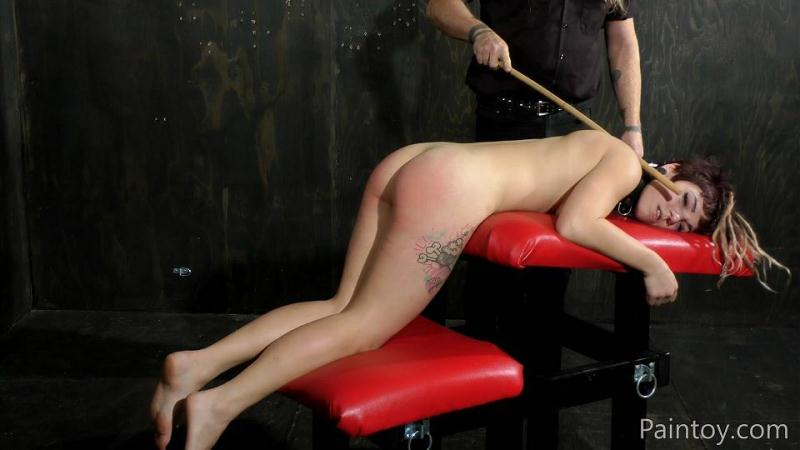 Paintoy.com: Pixie LeHaj - The Punishment For Flinching [FullHD] (457 MB)