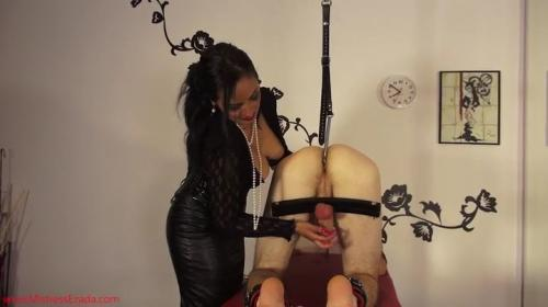 Clips4Sale - Mistress Ezada Sinn - Human pet milking [SD]