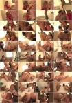 Evil Angel: Amanda Blow, Chris Johnson, Dane Cross, Darla Crane, Denis Marti, India Summer - MILF Bitches [WEBRip/SD 540p]