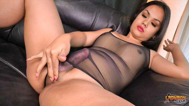 ladyboy.xxx - Sexy Curvy Amy Cums! (May 18, 2016) [HD]