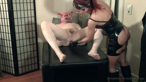 Absolute-Femdom.com [Cruel Pig Milking With Rubber Gloves] SD, 404p