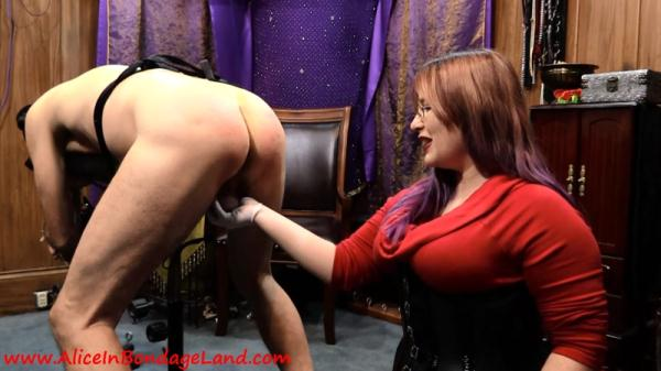 CANING AND PEGGING - STRAP-ON REWARD - AliceInBondageland.com (FullHD, 1080p) [Femdom, Strapon, Anal, Mistress, Slave]