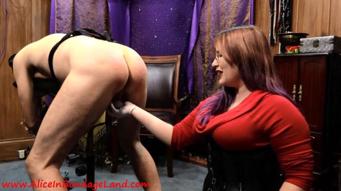 CANING AND PEGGING - STRAP-ON REWARD [AliceInBondageland] 1080p